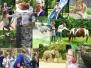2013.05.nn wycieczka-do-zoo