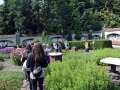 W ogrodzie Przypkowskich